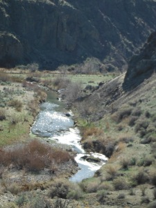 Succor Creek Canyon spring